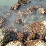 Key West056