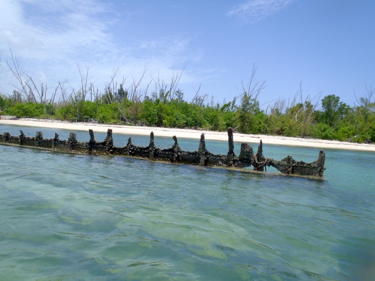 Remnants of a Shipwreck off Key West