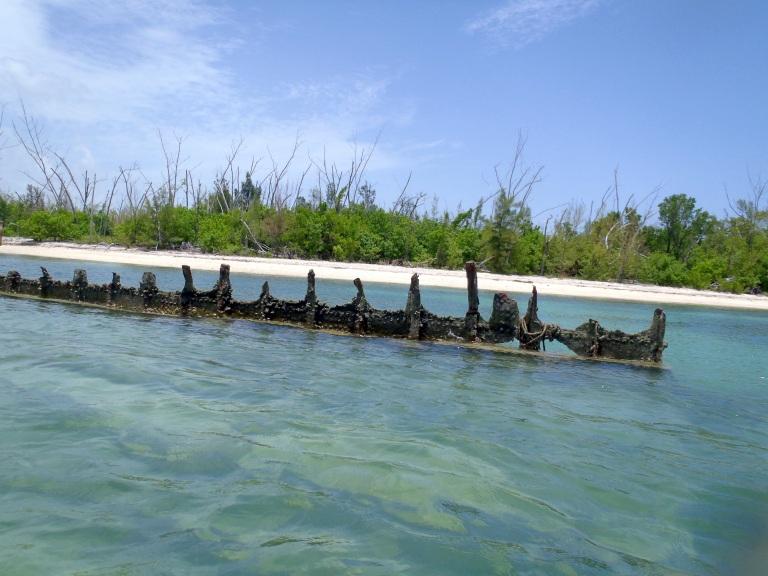 Remnants of a Shipwreck off Key West