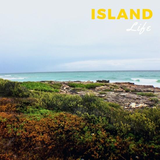 isla6